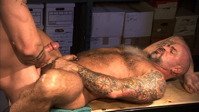 Tattooed Harley Everett and furry daddy Nate Pierce sucks Harleys big cock hairy balls Download Full Stud Gay Porn Movies Here