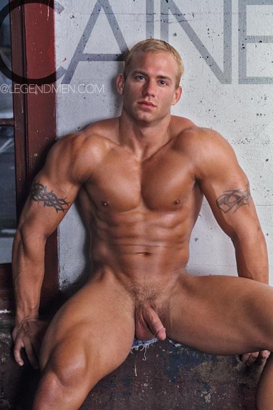 pro body builders hot nude