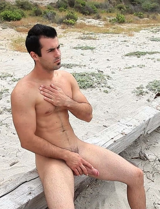Hard cocks on the beach