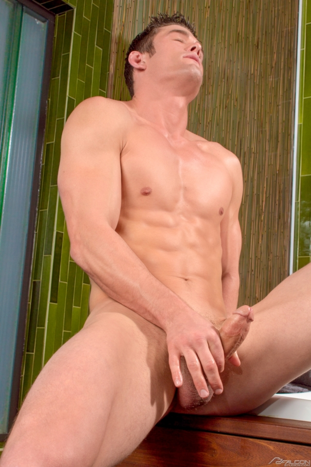 Studios Gay Porn Star Muscle Hunks Naked Muscled Men Young Jocks