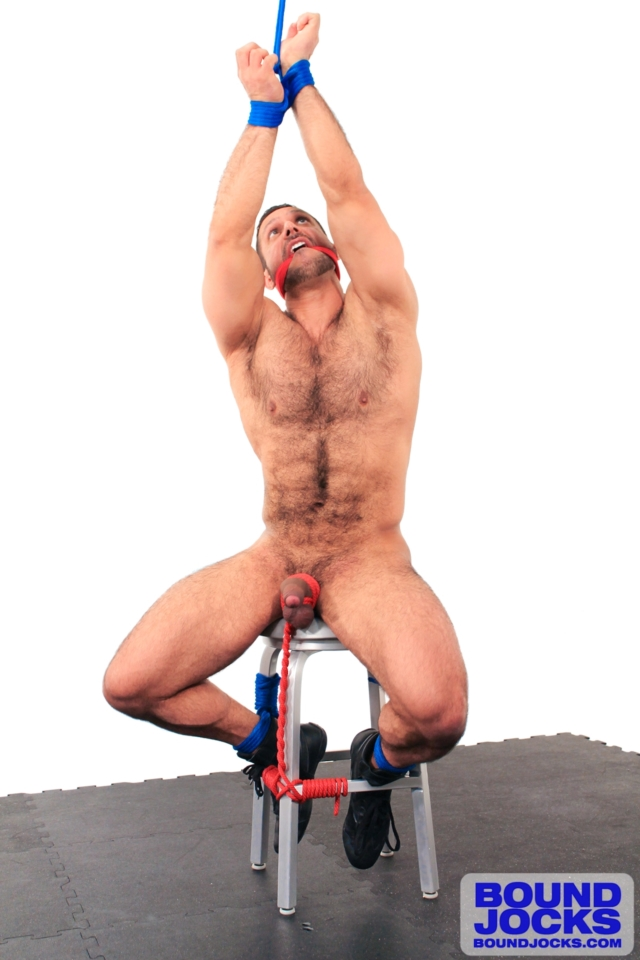 Hunks Bdsm Gay Hd Sex
