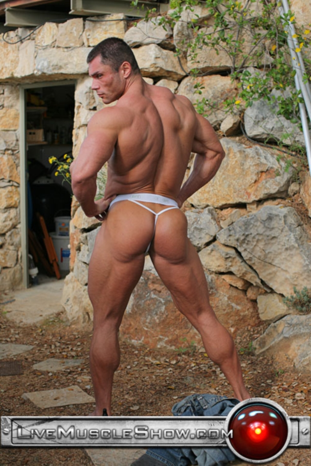 Live Muscle Show Gay Porn Naked Bodybuilder Nude Bodybuilders
