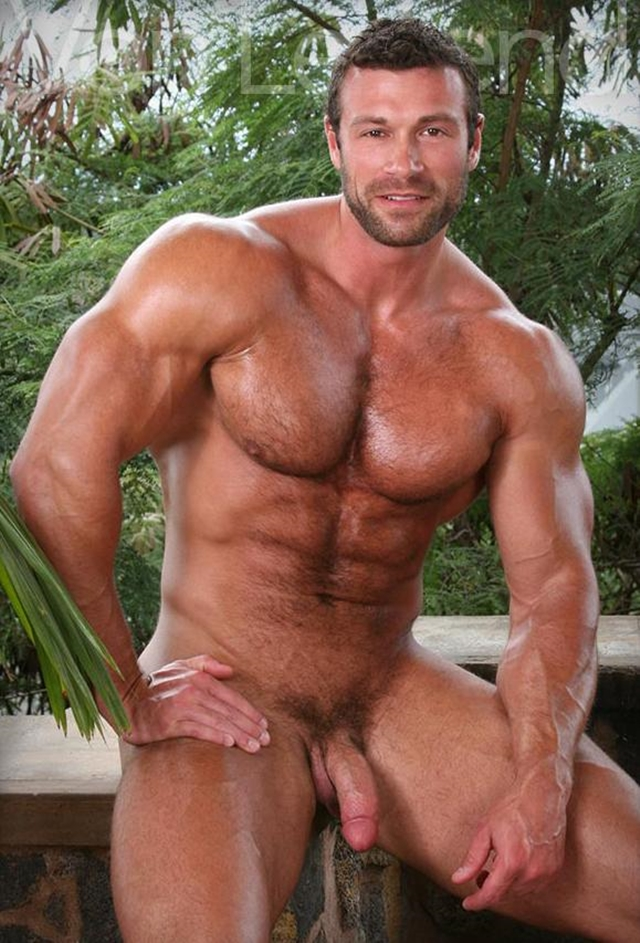 Gay hairy chested hunks