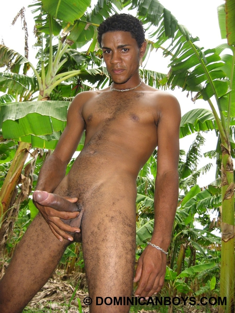 African dick movieture gallery gay xxx and 1