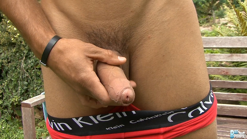 BadPuppy-washboard-stomach-thick-veiny-uncut-cock-23-years-old-Dany-Dolan-hottest-naked-boys-Czech-Republic-tight-bubble-asshole-010-tube-download-torrent-gallery-sexpics-photo