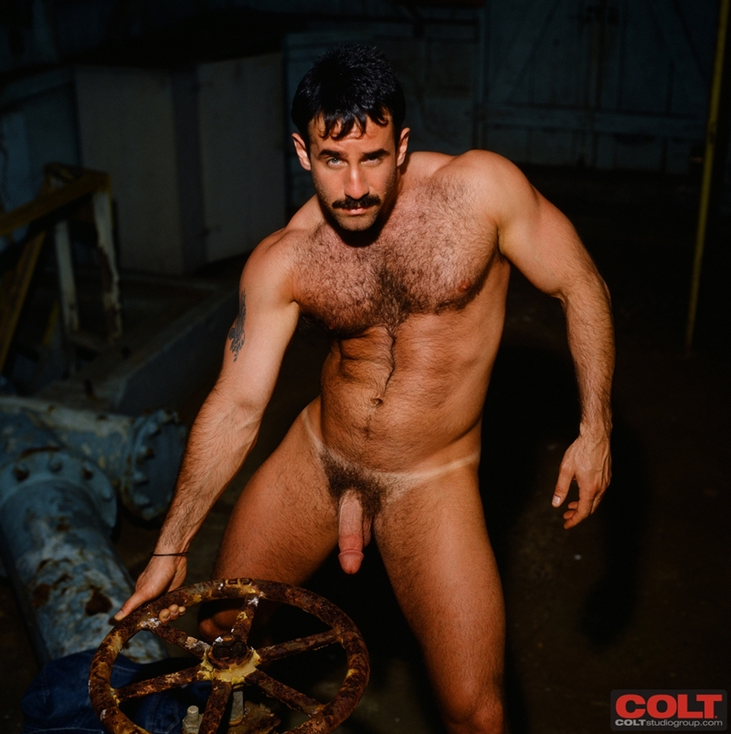 ColtStudios-hot-sexy-masculine-muscled-body-dark-hair-big-cock-hairy-chest-muscle-bodybuilder-Steve-Kelso-colt-man-icon-008-tube-download-torrent-gallery-sexpics-photo