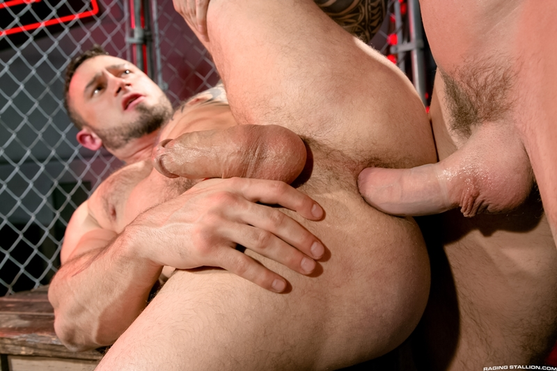 billy santoro gay rocco