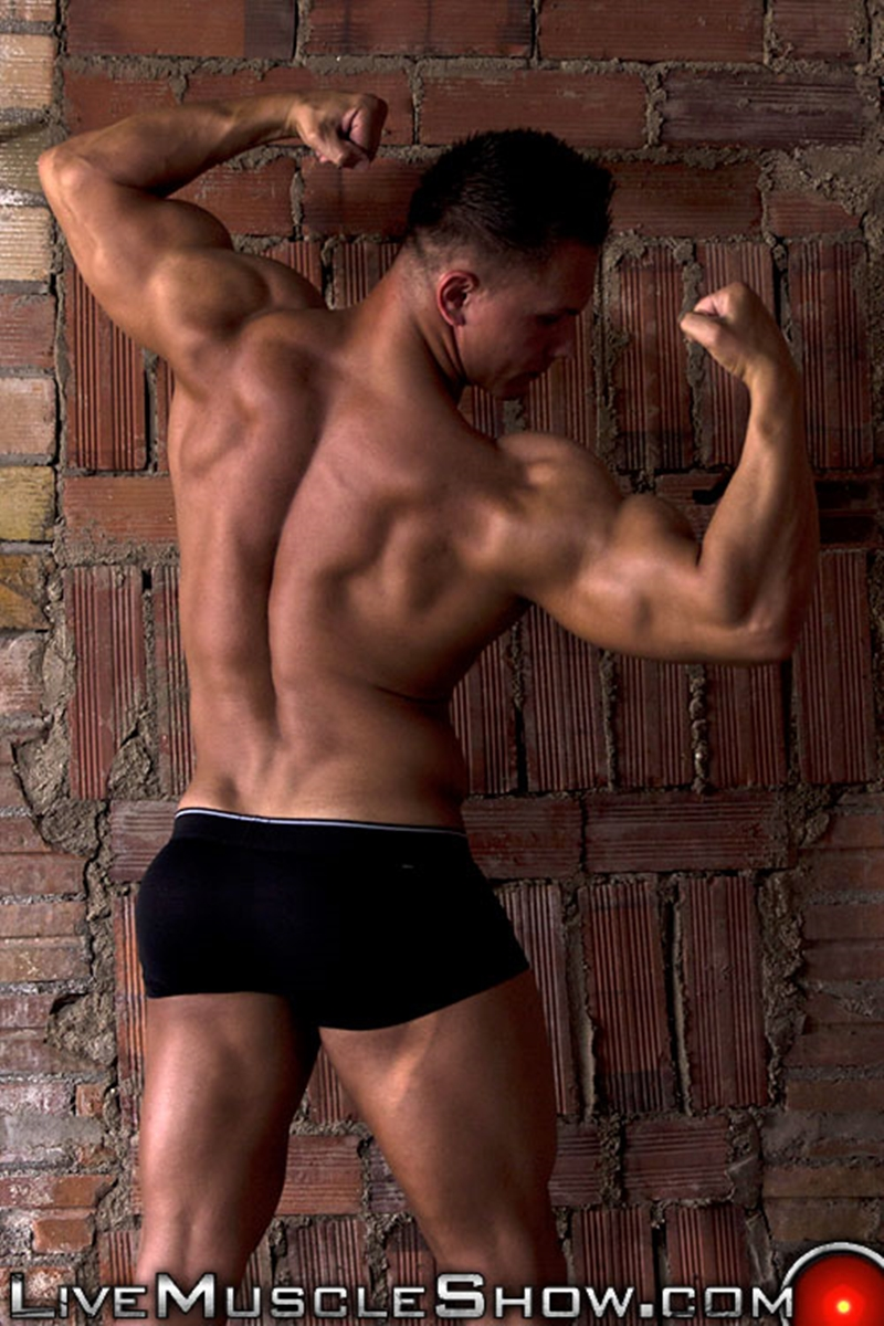 from Sonny gay biceps