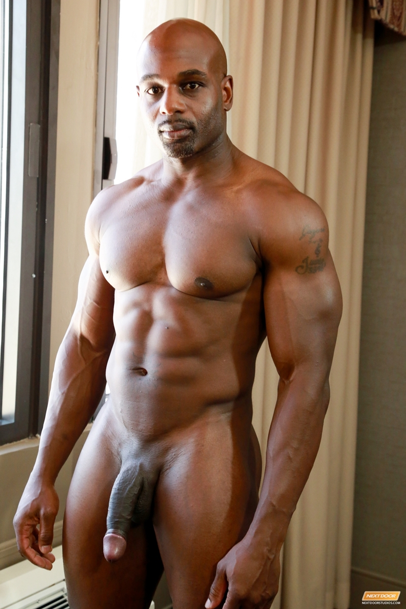 Big black cock gallery gay