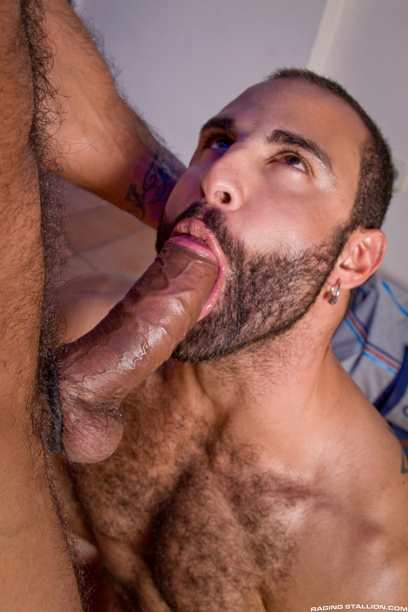 Free hairy gay sex videos