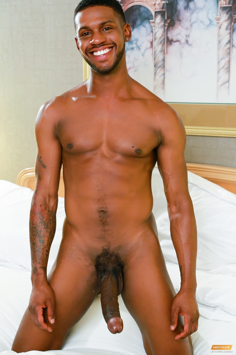 gay erection black gay viol