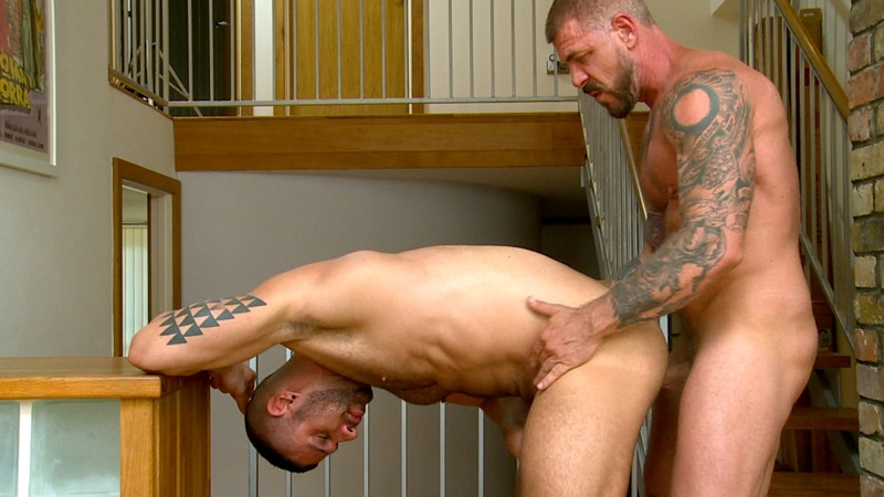 ButchDixon-Rocco-Steele-Craig-Daniel-Letterio-Riley-Tess-Delta-Kobra-bareback-fucking-assholes-uncut-cock-chests-hairy-sweaty-raw-holes-023-gay-porn-sex-porno-video-pics-gallery-photo