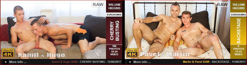 WilliamHigginsLatestGayPornScenes1 - Gay porn site William Higgins wins 5 star review