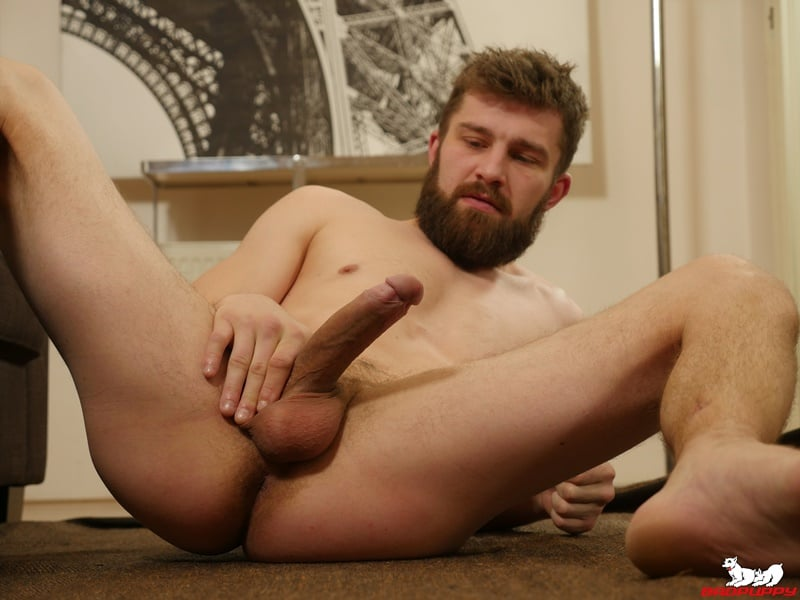 BadPuppy gay porn hot bearded muscle stud big uncut cock foreskin sex pics Nikol Monak tight undies jerking 001 gallery video photo - Hot bearded muscle stud Nikol Monak strips out of his tight undies and jerks his huge uncut dick
