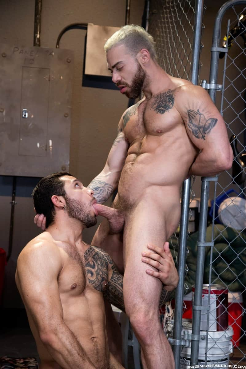 RagingStallion sneaker sex big muscle dudes Carlos Lindo cocksucker Ryan Cruz hairy dick blowjob 011 gay porn pictures gallery - Carlos Lindo sinks straight to his knees and gets Ryan Cruz's hairy dick in his mouth