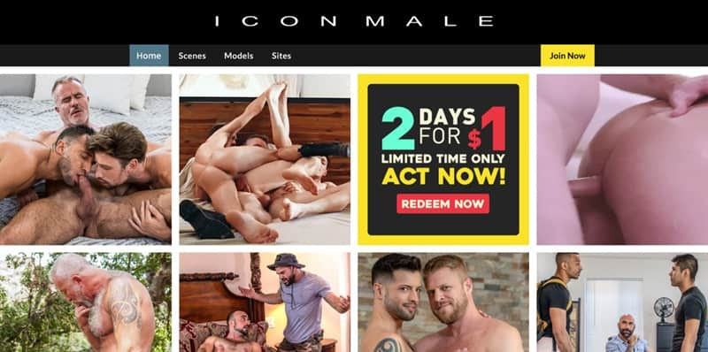 IconMale GayCest Sale Discount BlackFriday 001 gay porn pics - Holiday Discounts