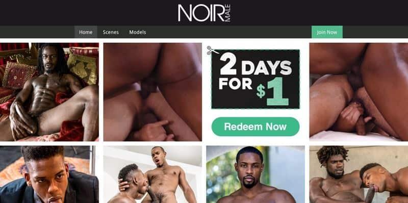 NoirMale Sale Discount BlackFriday 001 gay porn pics - Holiday Discounts